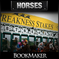 Preakness Stakes Picks