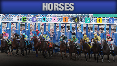 Belmont Stakes Betting Lines