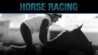 Horse Racing Wagering Lines