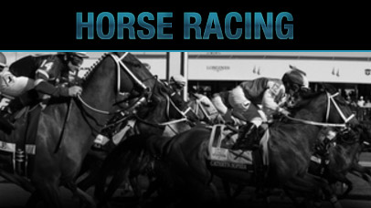 Preakness Stakes Matchups Odds