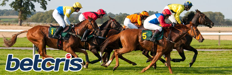 Carreras de Caballos - Apuestas Carreras de caballos