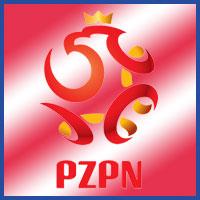 Seleccion de Polonia en la Euro Copa