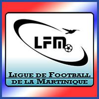 Seleccion de Martinica en la Copa de Oro