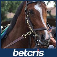 Gormley - Belmont Stakes