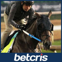 Lookin at Lee - Belmont Stakes