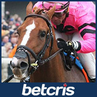 Meantime - Belmont Stakes
