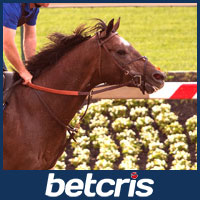 Multiplier - Belmont Stakes