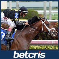 Patch - Belmont Stakes