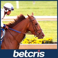 Senior Investment - Belmont Stakes