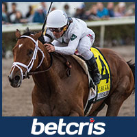 Audible Preakneess Stakes Odds