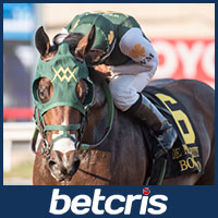 Bolt D Oro Preakneess Stakes Odds