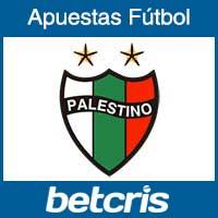 Fútbol Chile - Palestino