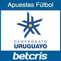 Primera Division de Uruguay