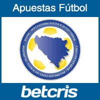 Seleccion de Bosnia Herzegovina en la Copa Mundial