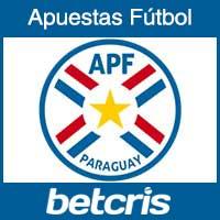 Seleccion de Paraguay en la Copa Mundial