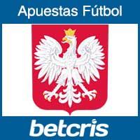 Seleccion de Polonia en la Copa Mundial