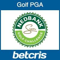 Nedbank Golf Challenge Betting Odds