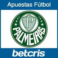 Fútbol Brasil - Palmeiras