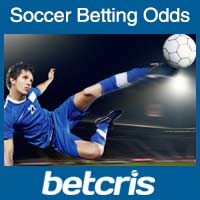 Soccer Betting Odds and Soccer Bets