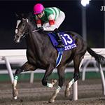 2017-Horses-Epicharis-Betting-Odds