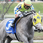 Fast and Accurate Kentucky Derby Betting Odds