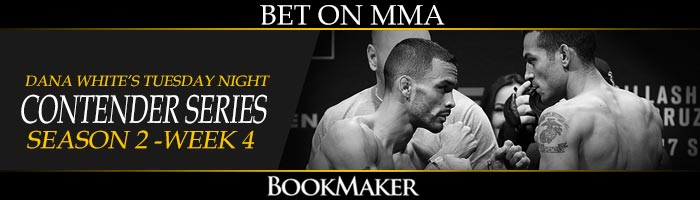 Betting On MMA at Bookmaker
