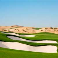 Dubai World Championship presented by DP World Betting Odds